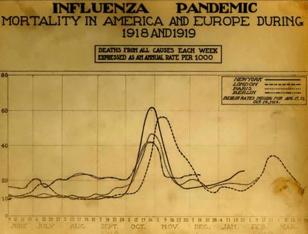 Influenza spagnola grafico